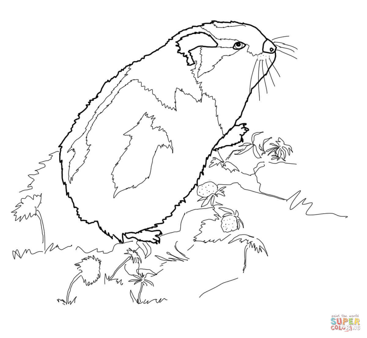 Arctic Lemming Coloring Page