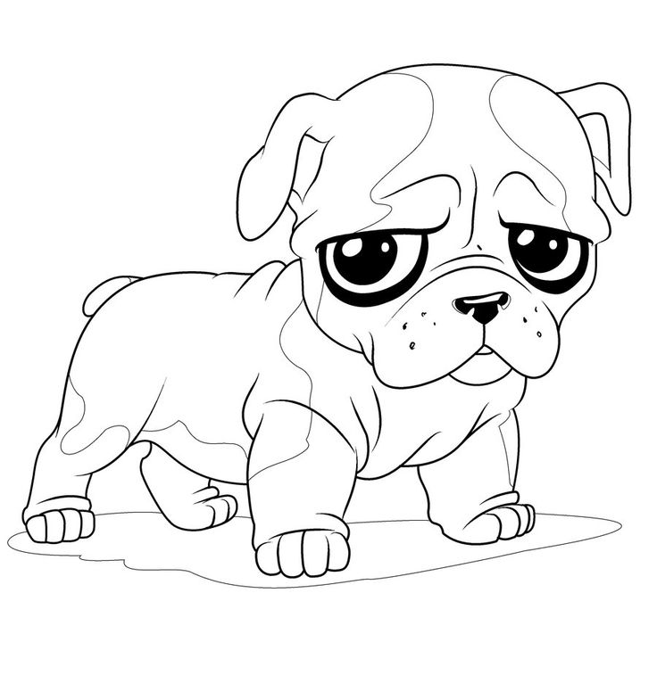 French Bulldog Coloring Pages - Coloring Home