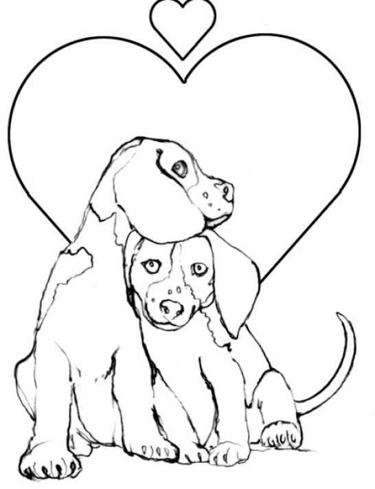 puppy and kitten coloring pages cartoonrockscom - Puppy Coloring Pages