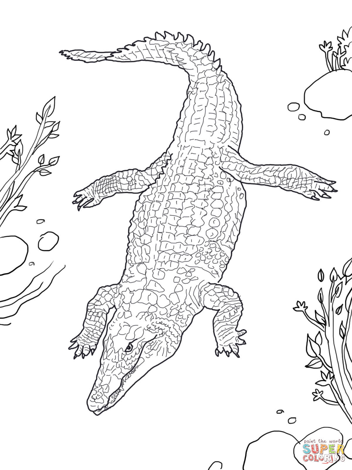 Coloring Pages Of Baby Crocodile