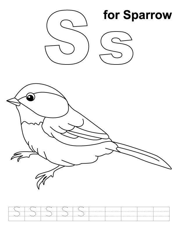 sparrow coloring pages az coloring pages