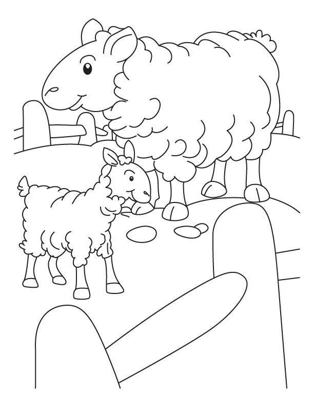 Sheep Outline Coloring Page Coloring