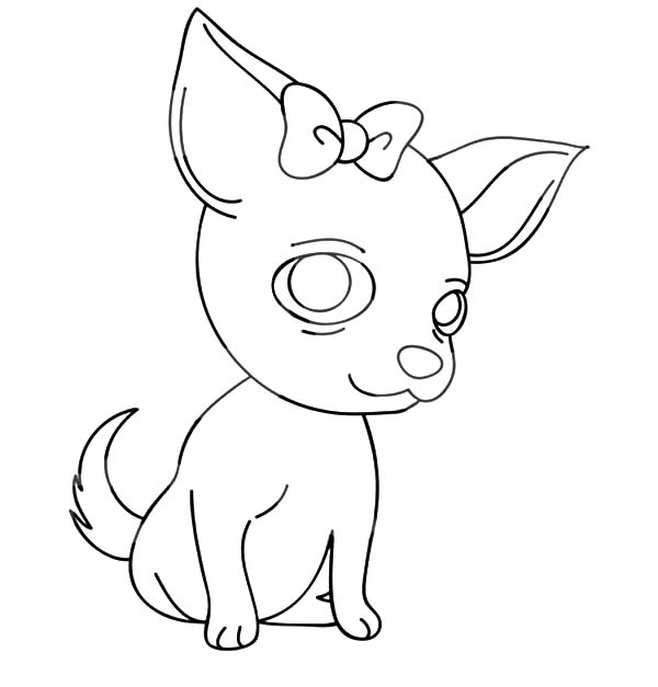 chihuahua coloring pages online - photo#24