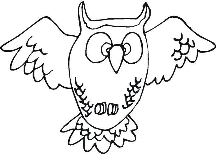 nocturnal animals coloring pages - photo#16