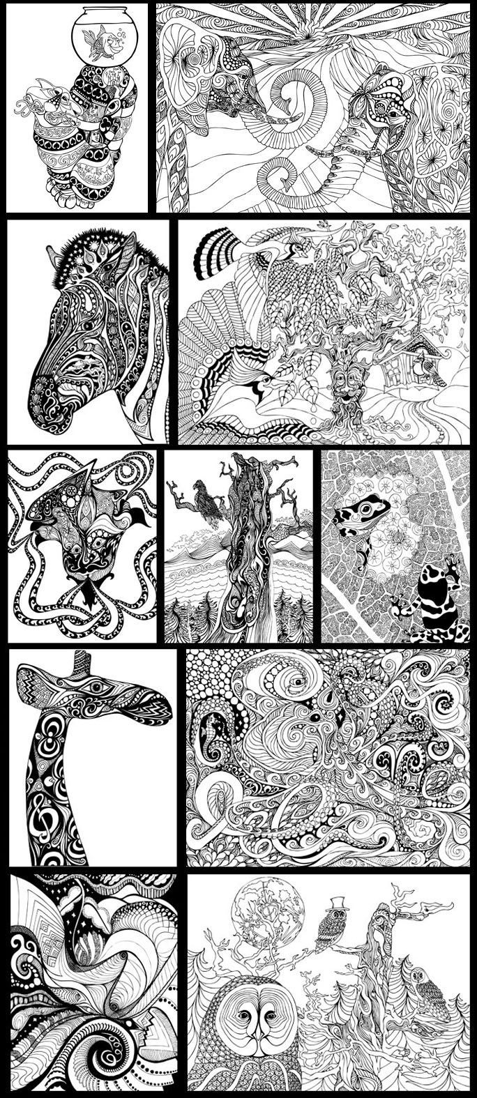 Adult Coloring Pages Safari Coloring Home