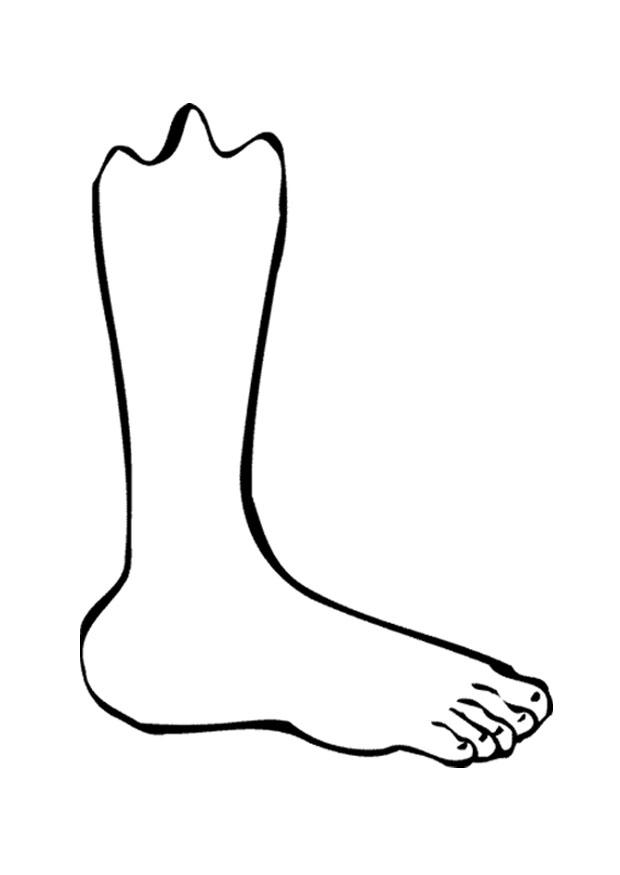 Coloring Page Foot Img 9521 Coloring Home