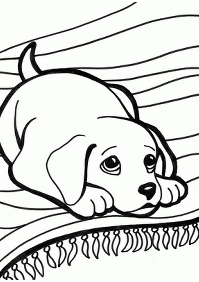 Free coloring pages kittens and puppies - Pets Coloring Pages Coloring Part 13