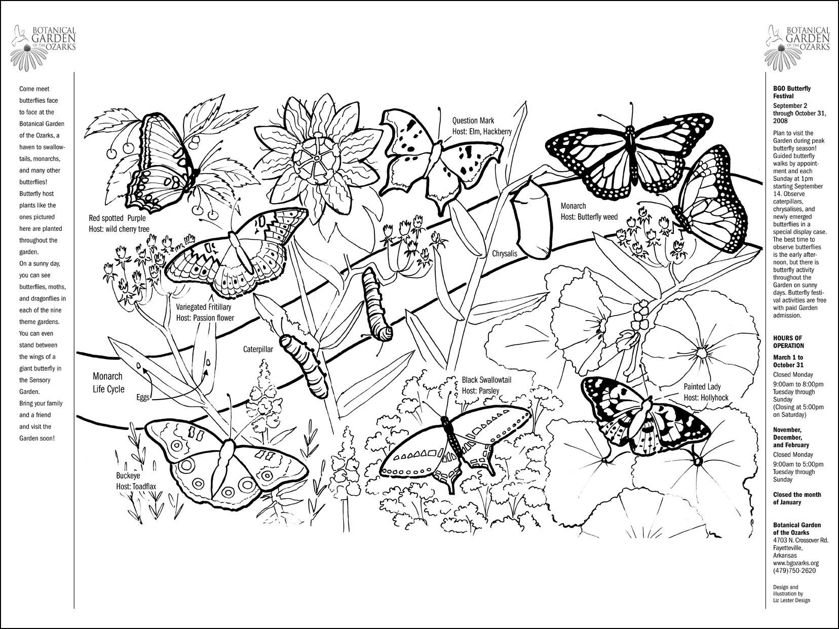 botany coloring pages - photo#29