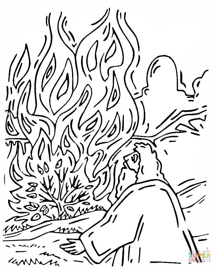 free coloring pages of bushes - photo#48