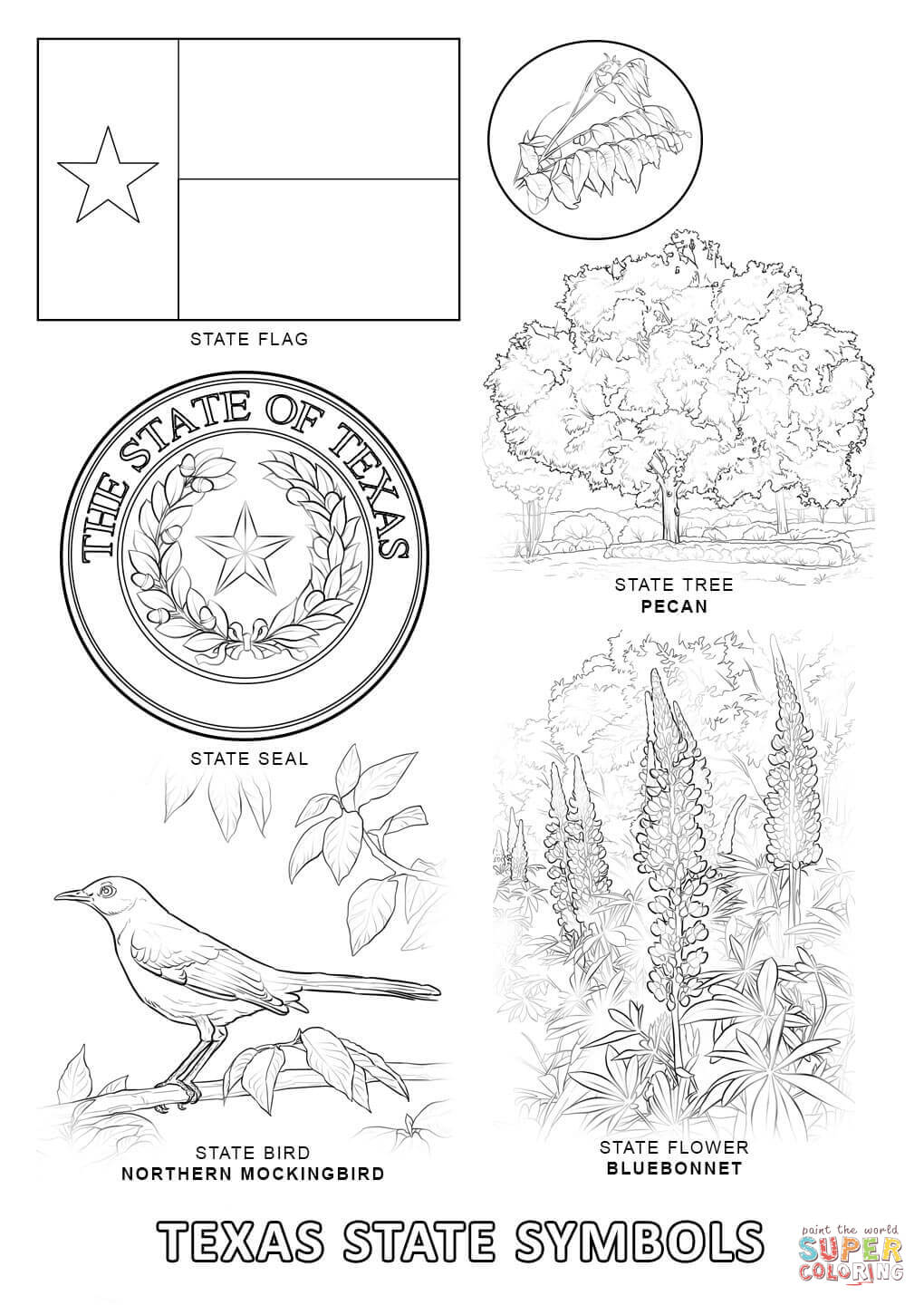 Texas State Symbols coloring page | Free Printable Coloring Pages