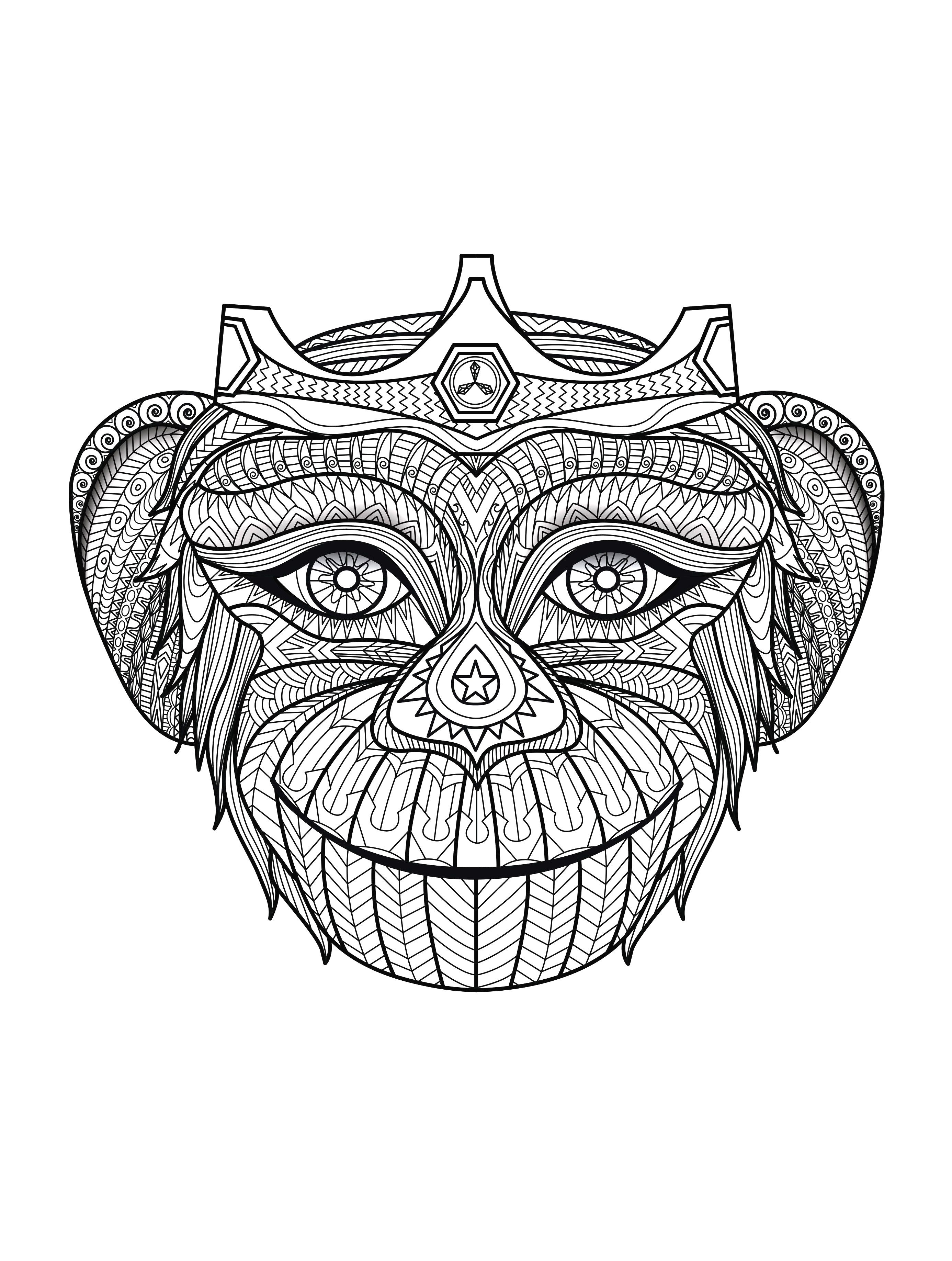 Coloring Pages For Adults Turtles : Adult coloring pages turtle az