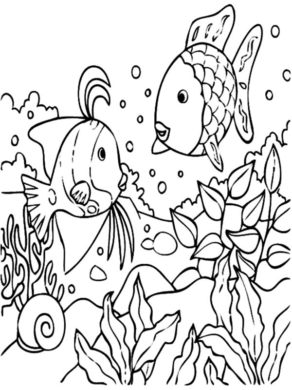 Coloring Pages Tropical Coloring