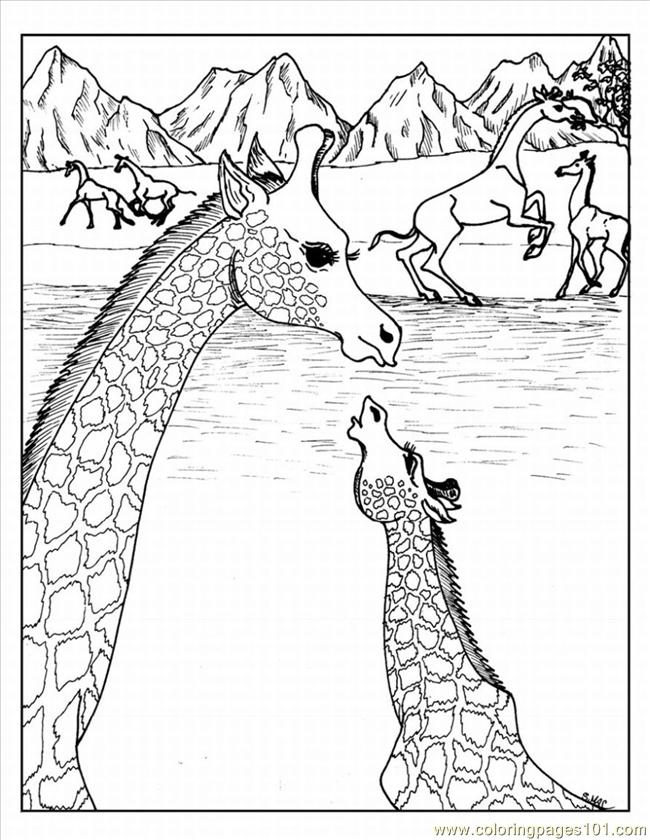 Adult Coloring Pages Animals - Best Coloring Pages For Kids   840x650