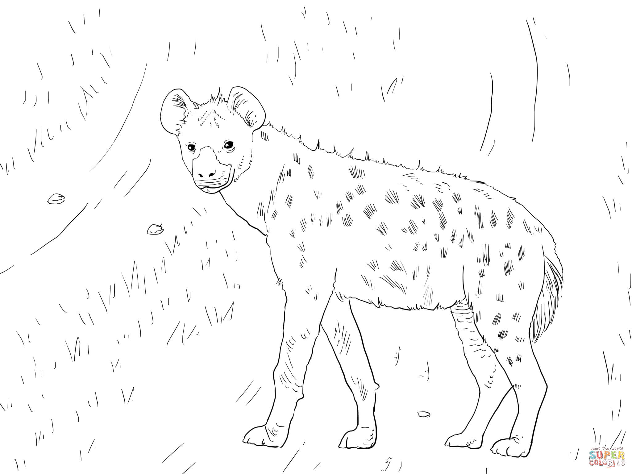 African Spotted Hyena coloring page | Free Printable Coloring Pages