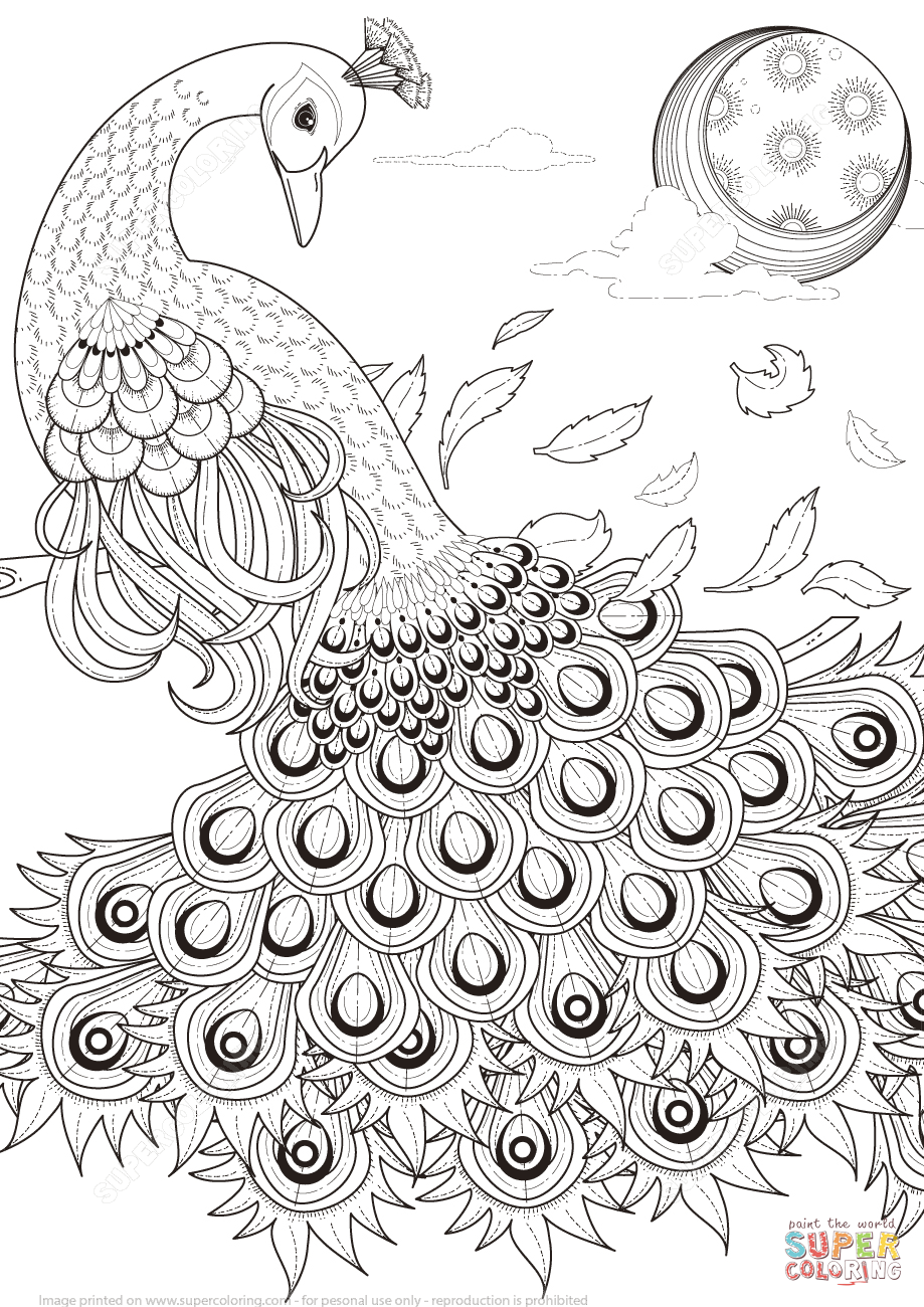 Cool Printable Coloring Pages For Adults : Cool Coloring Pages For Adults Peacock Coloring Home