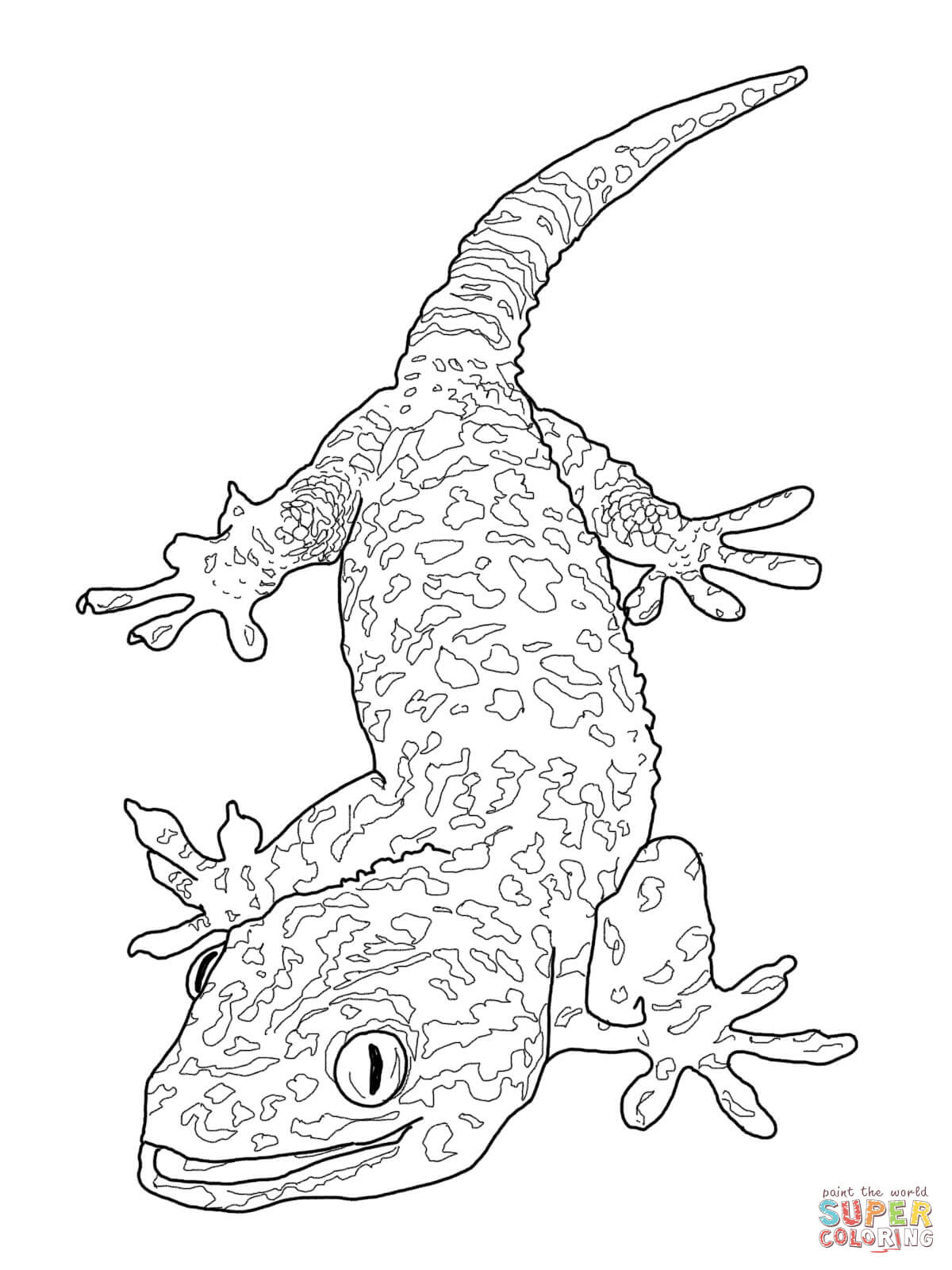 Flying Lizard Coloring Pages