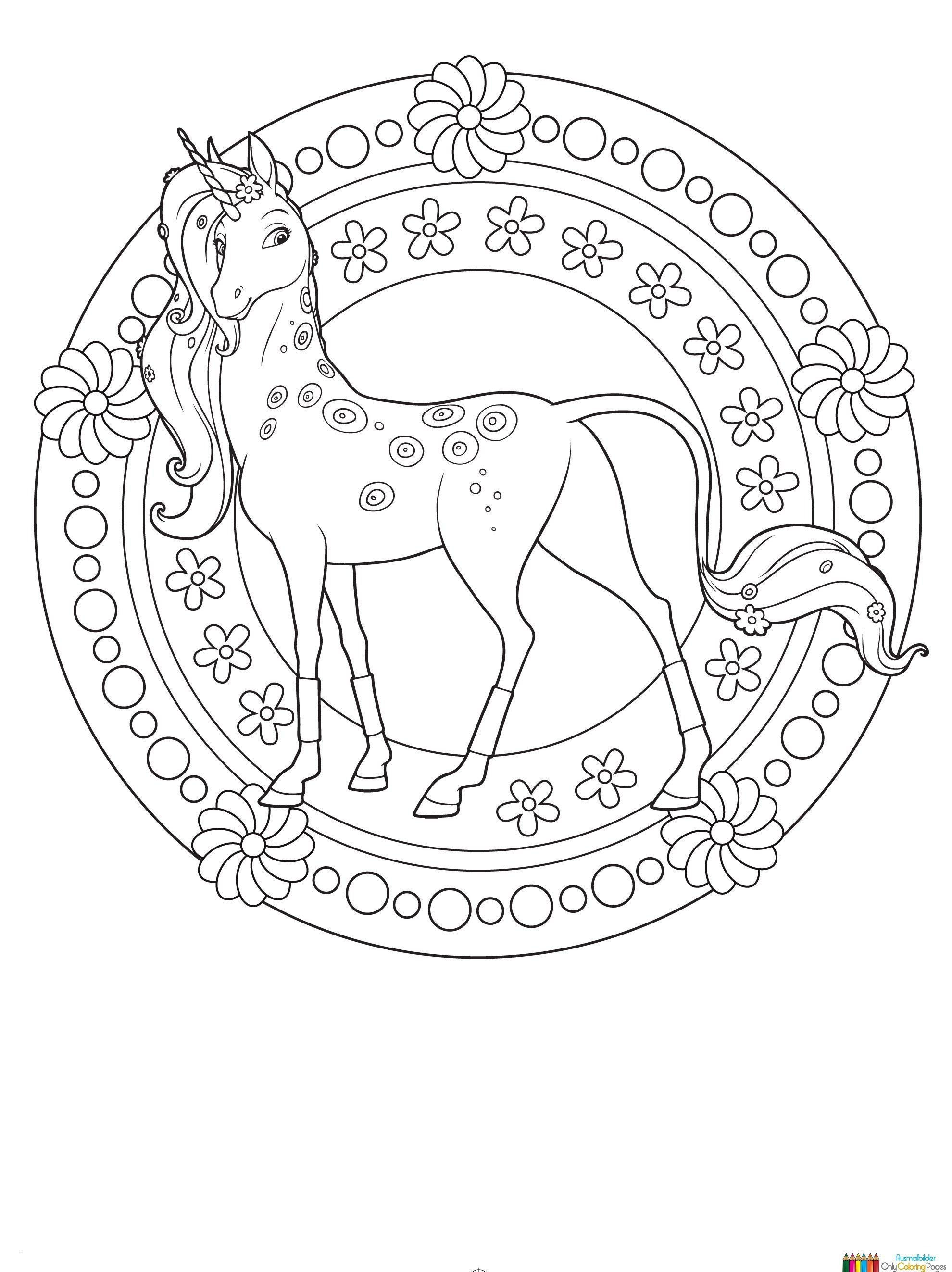 Coloring Running Arabian Horse Coloring Page Horses Pages Coloring Home