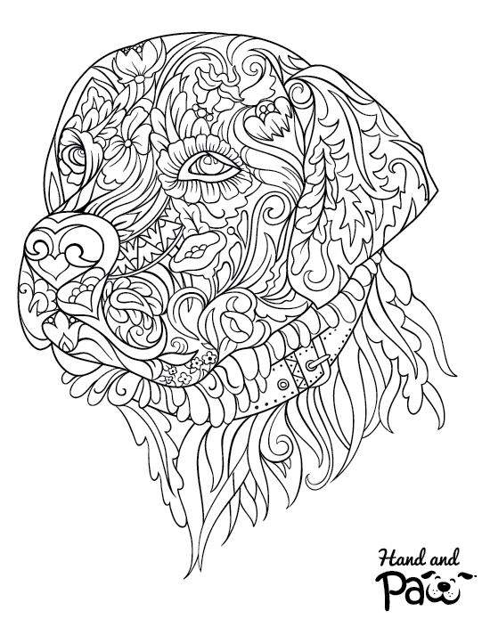 Adult Coloring Pages - Hand and Paw | H+P Natural Wellness