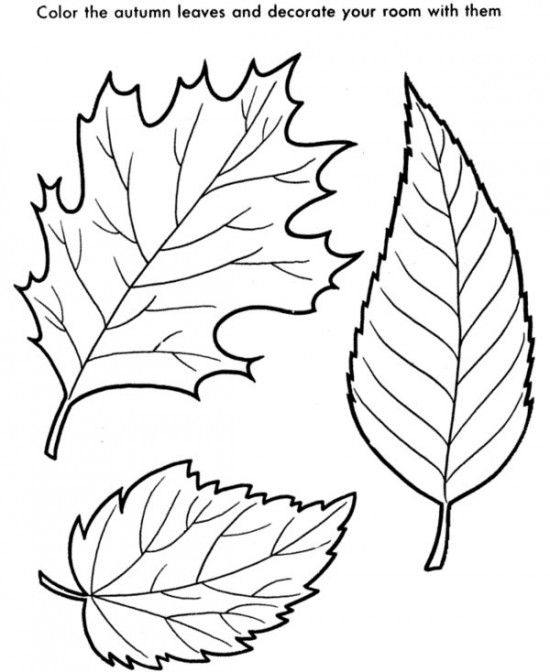 Coloring Pages Autumn Trees Best Coloring Page 2017