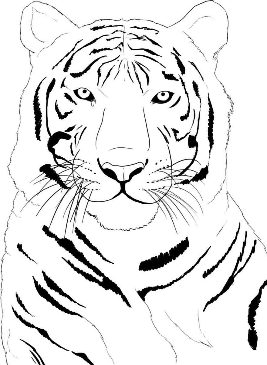 Tiger Head Zen Art Style Illustration, Print In Black And White ... | 1206x880