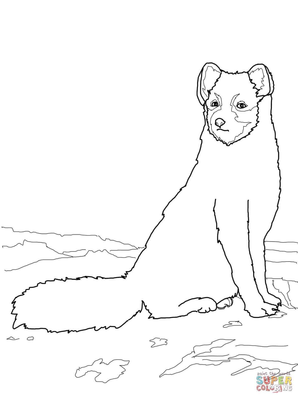 Sitting Arctic Fox Coloring Page Free Printable Coloring Pages Coloring Home