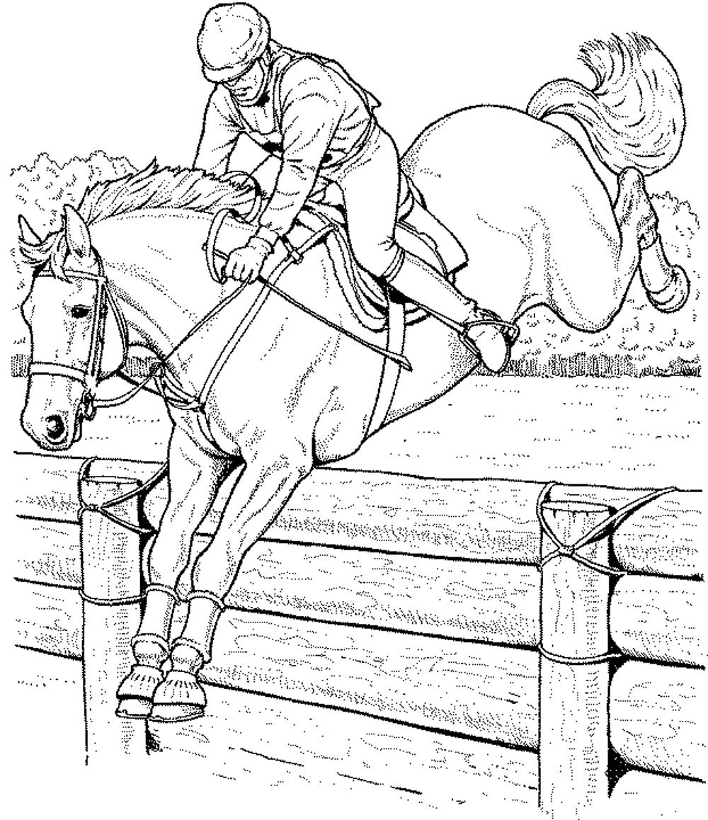 Race Horse Coloring Page - Coloring Home