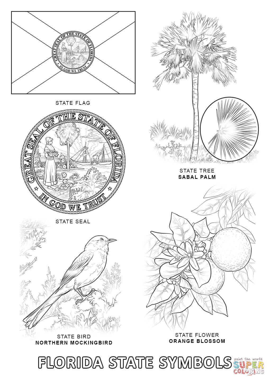 florida state symbols coloring page free printable coloring pages