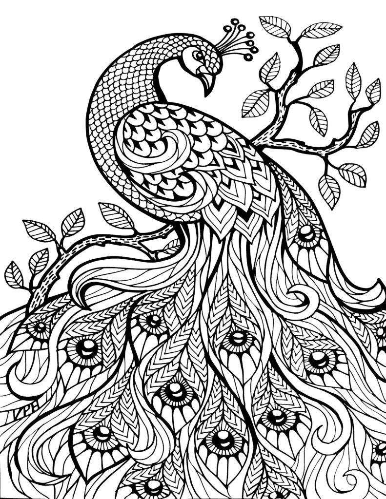 Free Printable Advanced Coloring