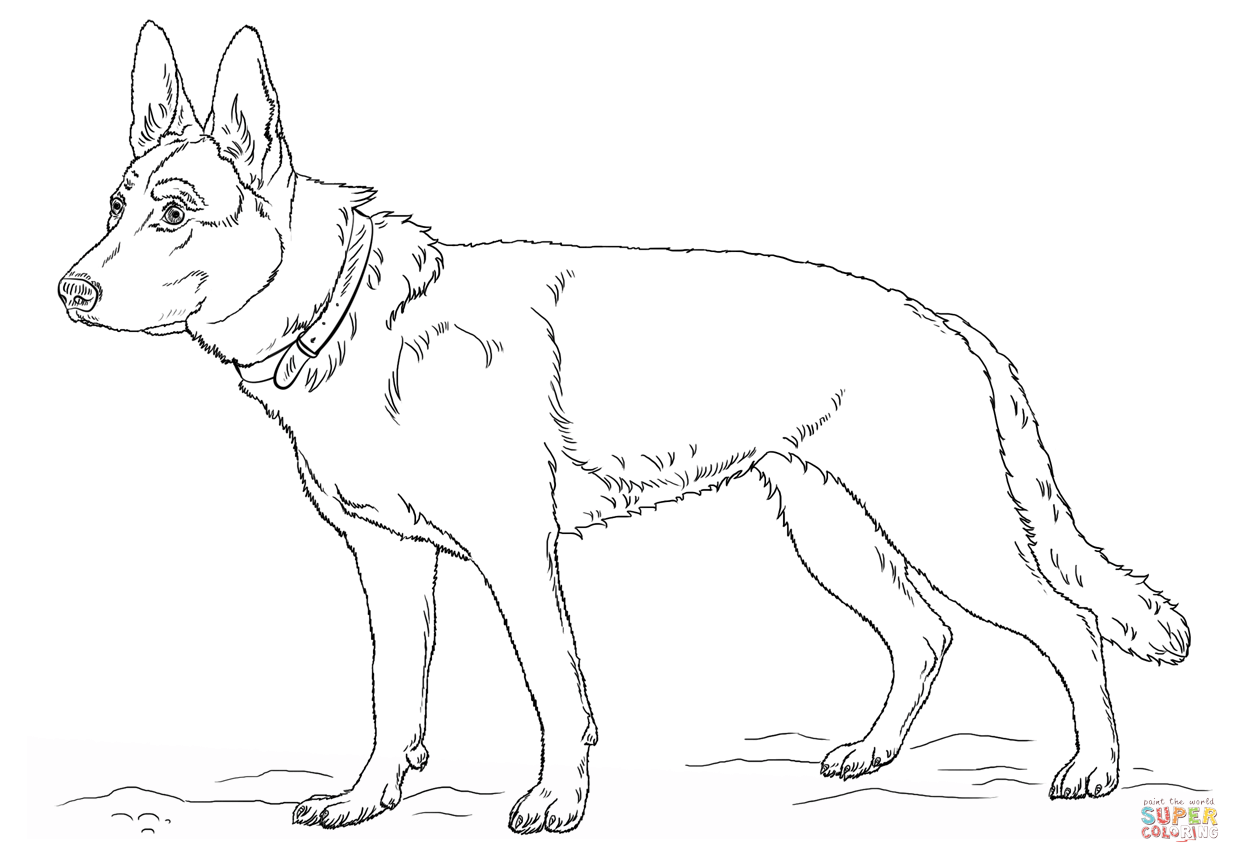 German Shepherd Dog Coloring Page - Coloring Home