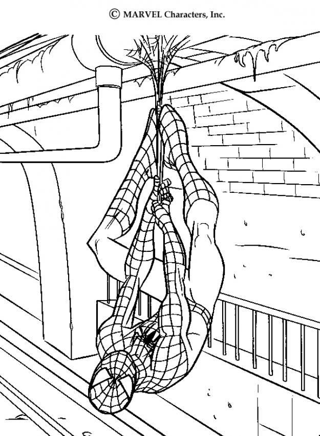Spider-Man: Crafts, colorig pages and activities for kids