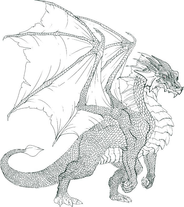 Free cool dragon coloring pages for Dragon coloring pages pdf