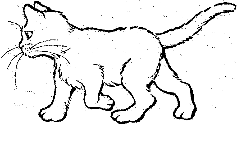 Kitty Cat Colouring Pages Page 2 Baby Cat Coloring Pages