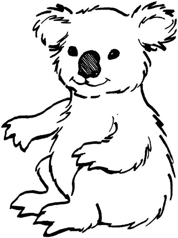 Koala Bears Coloring Pages Coloring Home