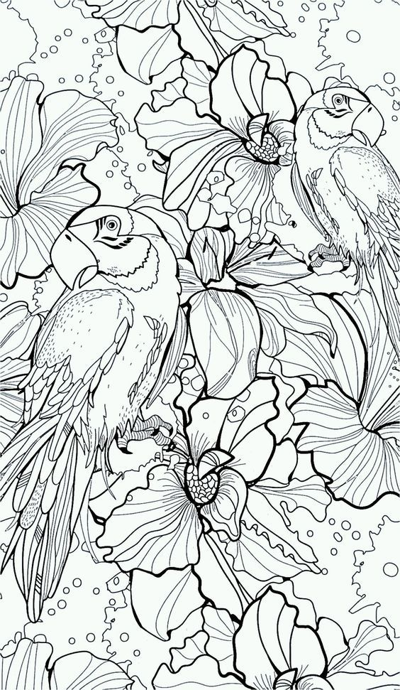 fantasy based coloring book pages - photo#14