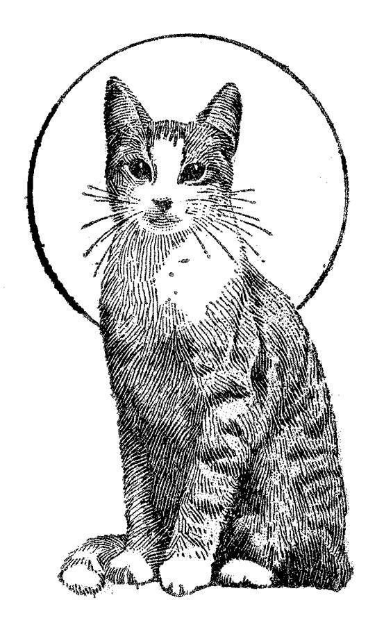 Kittens With N? Butterflies Free Coloring Pages - Coloring ...