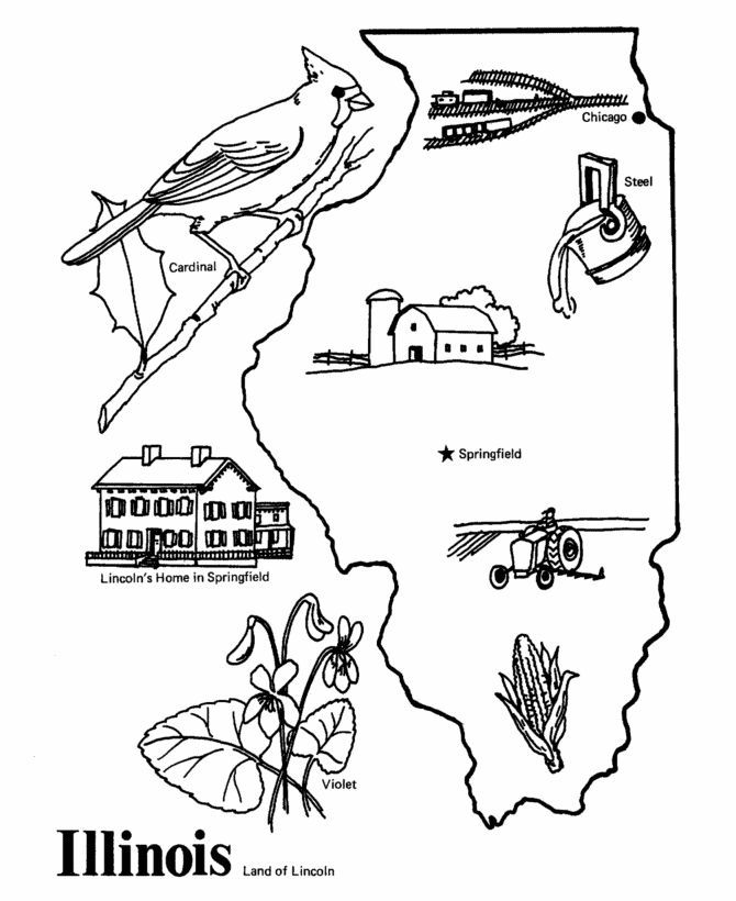 8 Pics of Illinois State Bird Coloring Page - Illinois Coloring ...