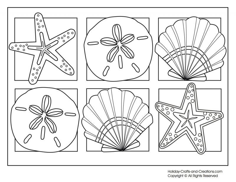 coloring pages of seashells coloring home