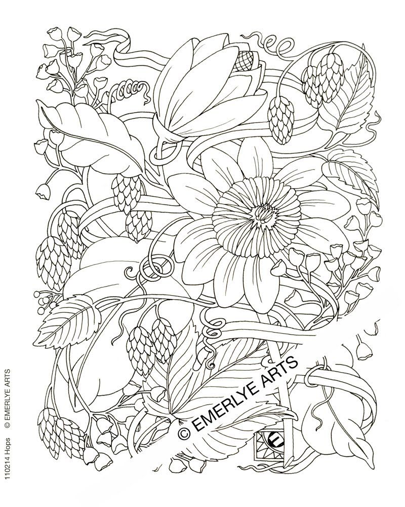 flower coloring pages advanced az coloring pages