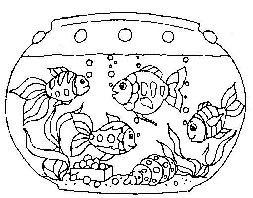 i sea horses childrens picture book and plush seahorses. finding ... - Aquarium Coloring Pages Printable