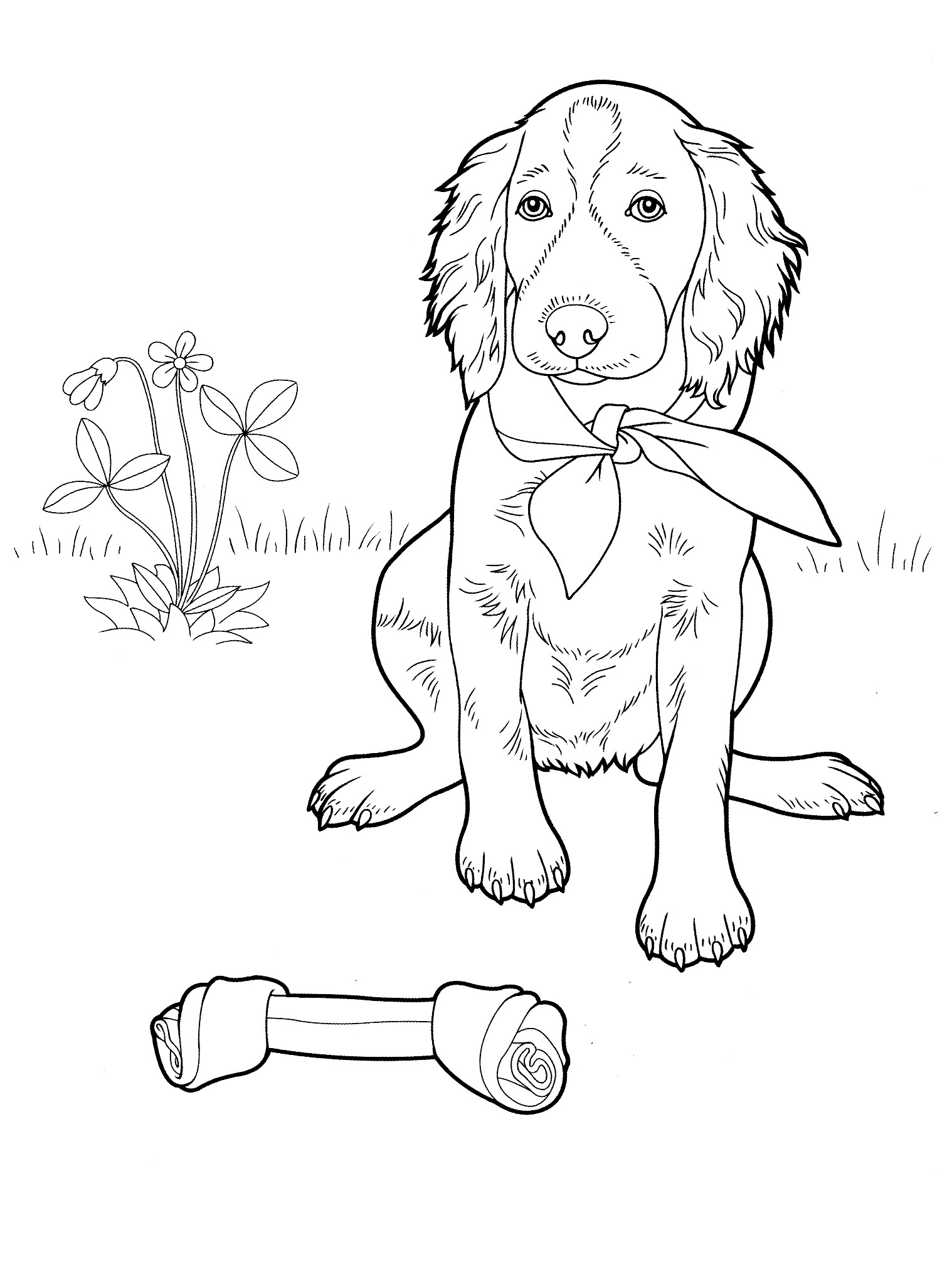 It is a picture of Accomplished Adult Coloring Page Dog