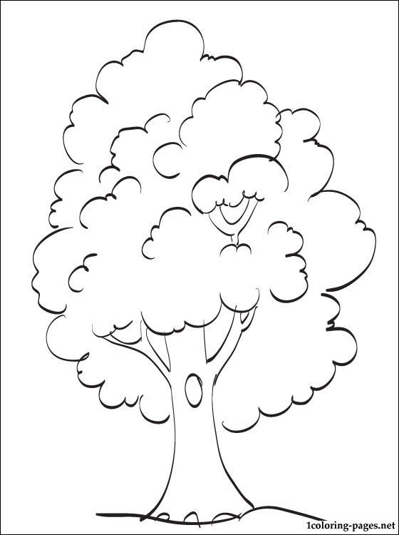 Tree coloring page | Coloring pages