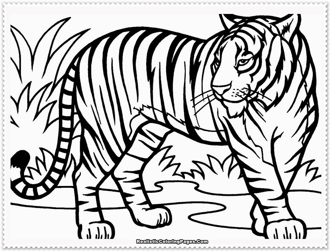 coloring page tiger - High Quality Coloring Pages