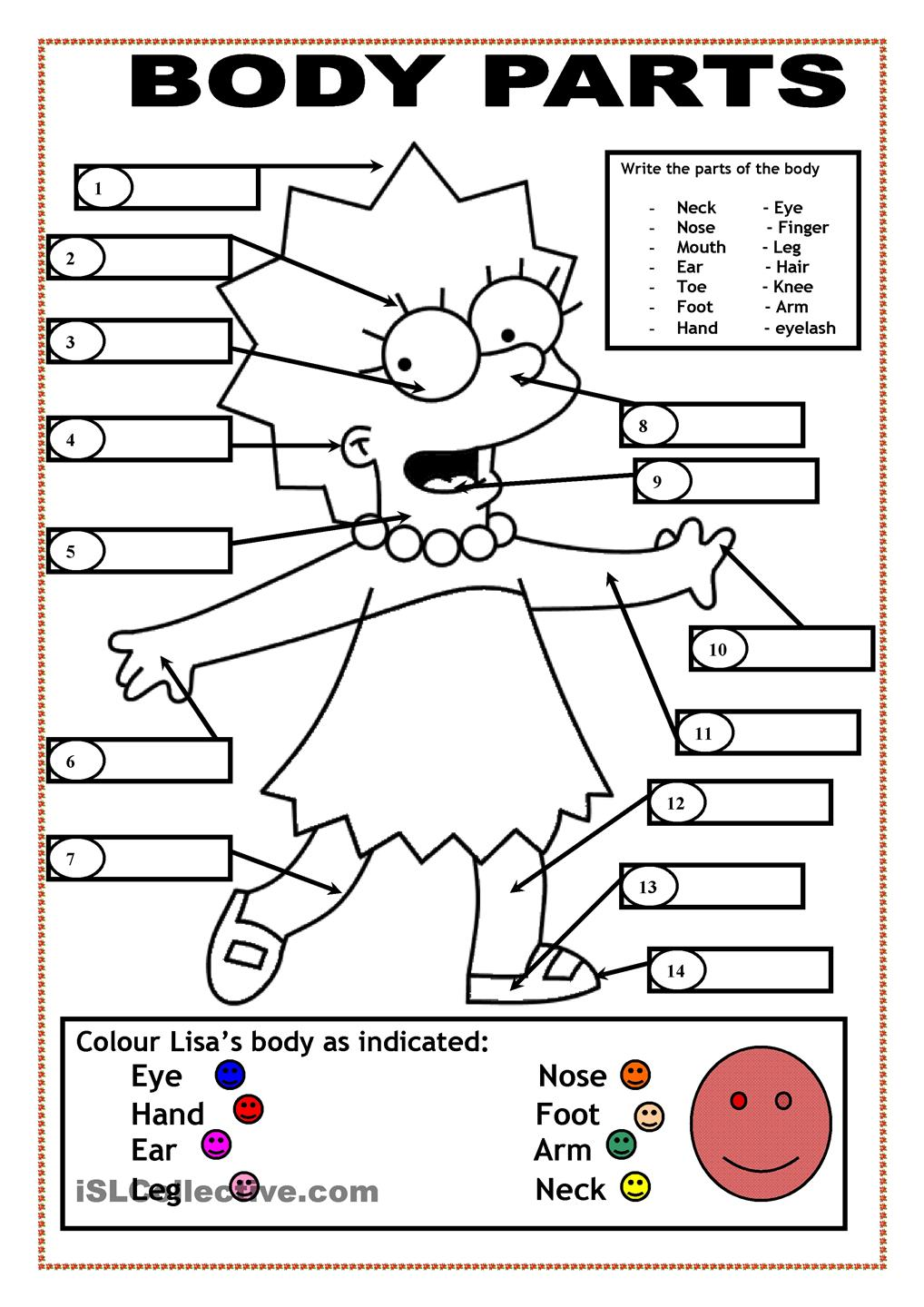 body parts coloring page for kids