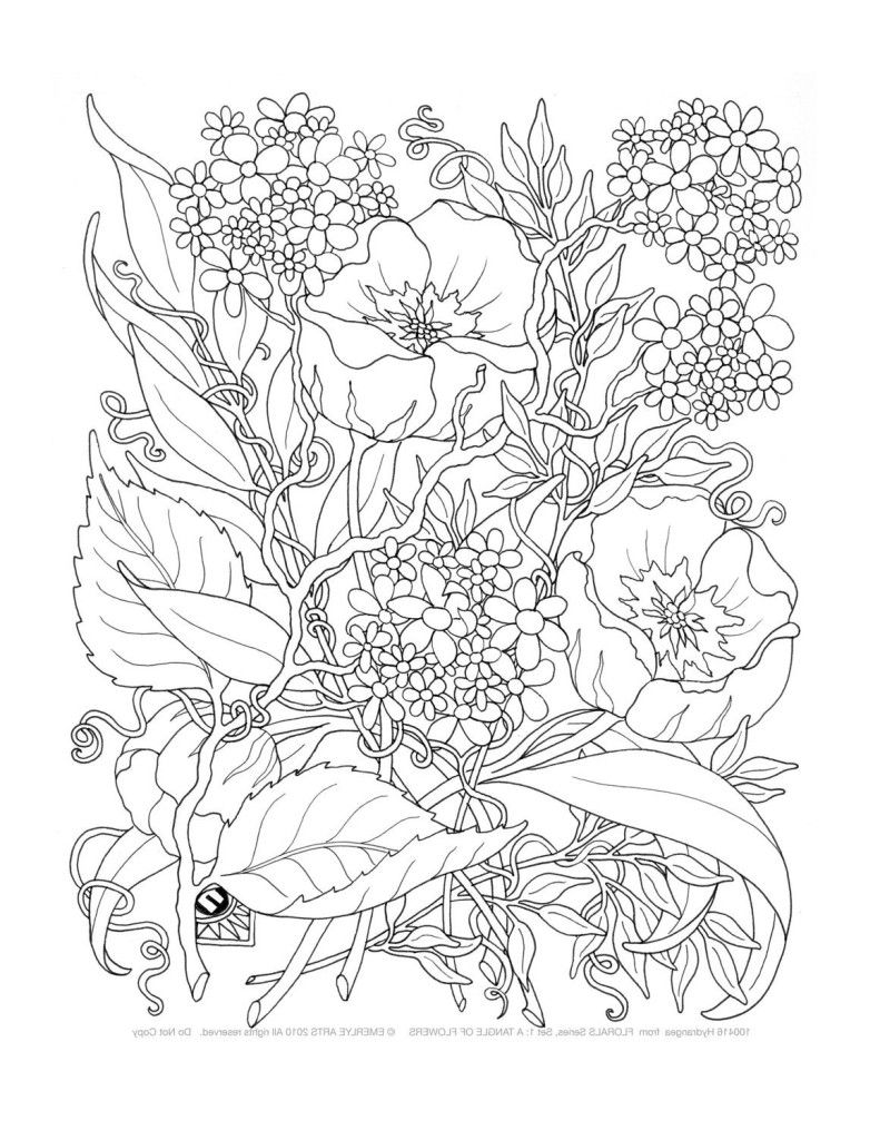 Coloring Books For Adults 9gag : Adult Only Coloring Pages Coloring Home
