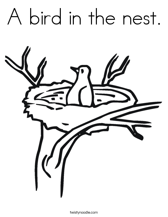 bird in nest coloring pages - photo#28