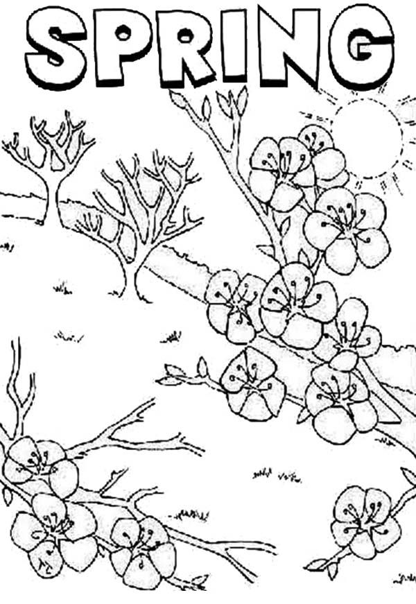 Disney Springtime Coloring Pages - Coloring Home