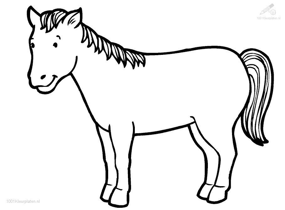 Coloring Pages Of Horses Rearing | Cartoon Coloring Pages