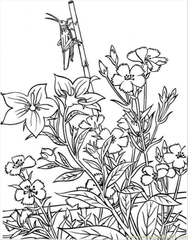 coloring pages garden of eden - photo#13