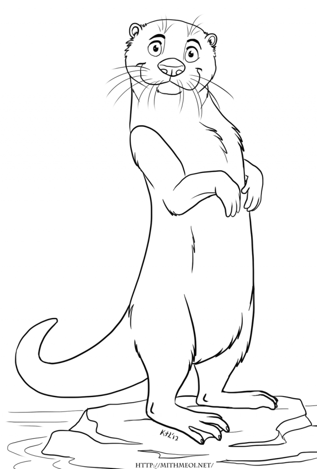 coloring page otter img otter coloring pages printable coloring