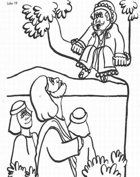 Best Photos Of Coloring Page Of Zacchaeus In A Tree Zacchaeus Coloring Home